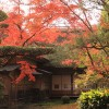 九年庵に紅葉を見に行った / 佐賀県神埼町