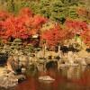 耶馬溪ダム記念公園「溪石園」の紅葉がキレイです。