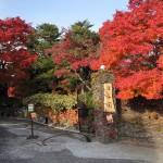 迎仙閣 長崎の紅葉スポット