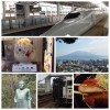 鹿児島旅行での観光・グルメ・スポット・お土産のオススメを紹介します!
