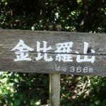金比羅山にハイキング?登山?に行ってみた。