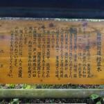 箱根芦ノ湖旧東海道を箱根町港から箱根園港まで歩いてみた。