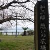 和三郎公園 長与207号線にある桜の名所へお花見に行ってみた。